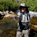 Bear River cutthroat--Logan River, Franklin Basin