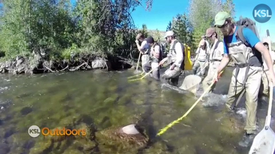 KSL Outdoors with Trout Unlimited on East Fork of the Bear